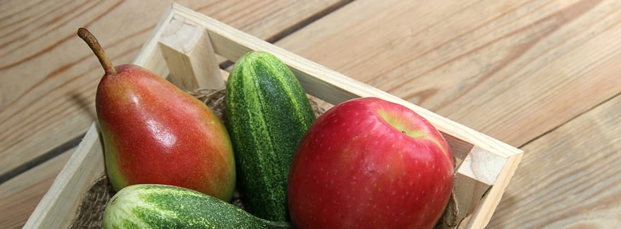 Tips for your October garden