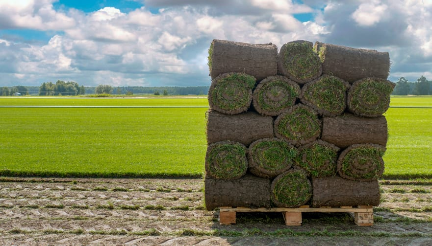 Turf Pallet Delivery Now Available