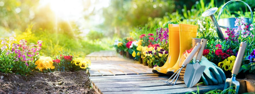 April Isolation Tips for your Garden