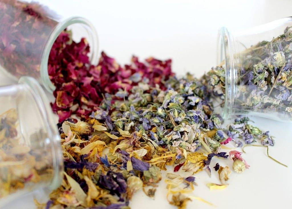 Making dried flowers - Lockdown activites for children