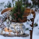 Erna's Top Tips for your December Garden